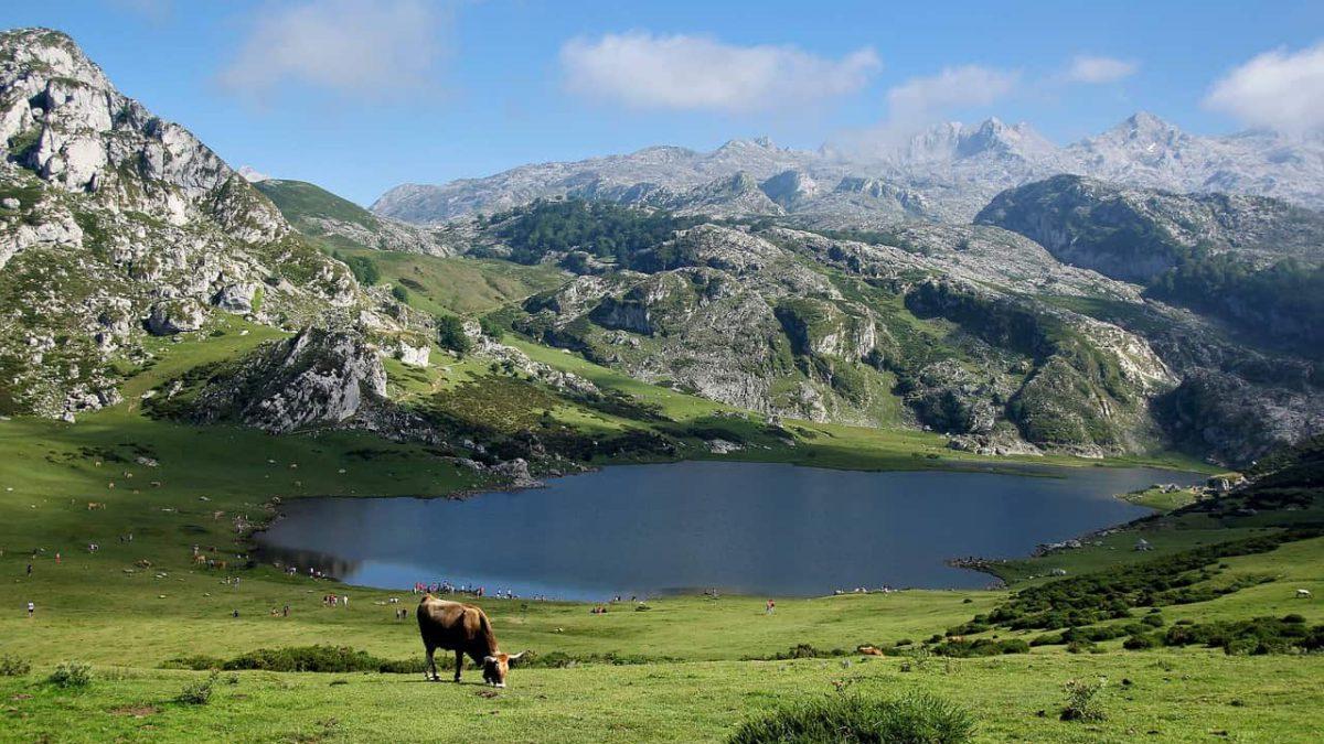 5 raisons qui vous pousseront à visiter les Pyrénées