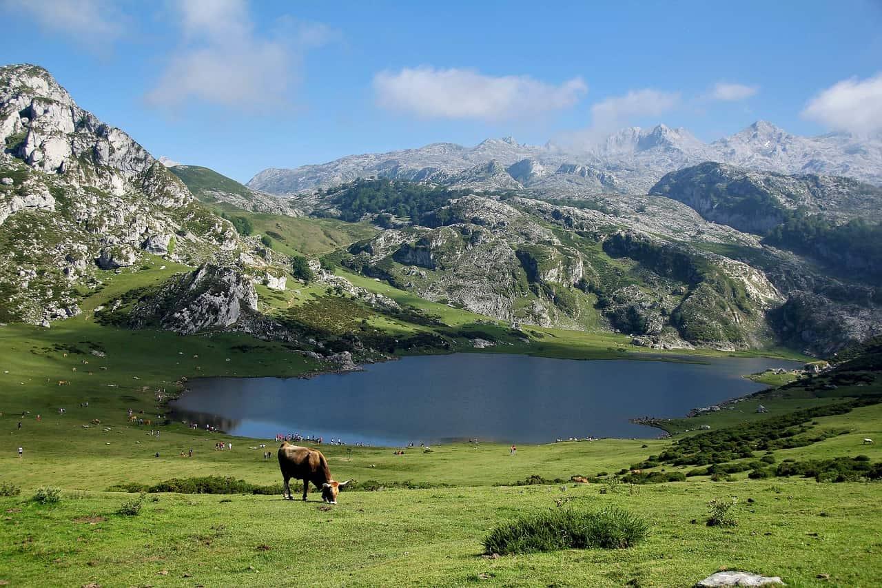 raisons visiter Pyrénées